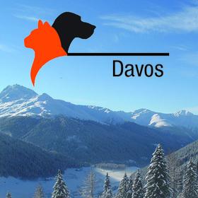 KLEINTIER Davos 2018: Fieber - entzündlich, infektiös oder immunbedingt?