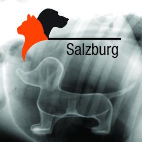 Salzburger Internistik Seminar: Problemorientierte Aufarbeitung internistischer Leitsymptome