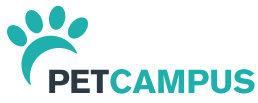 Seminar für TFAs: Der Weg zur katzenfreundlichen Praxis - jetzt online anmelden!