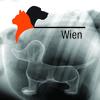 Wiener Internistik Seminar - Problemorientierte Aufarbeitung internistischer Leitsymptome 1