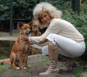 Hundeverhalten-Seminar mit Dr. Dorit Feddersen Petersen